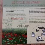 Les-Amanins-cycle-vivant-eco-entreprenariat