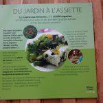 Les-Amanins-du-jardin-assiette-eco-entreprenariat